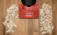 Upright Vacuums Cleaners for Hardwood Floors